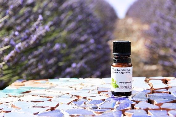 lavender-true-dsc_0760